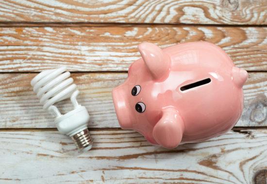 Piggy bank and energy saving bulb